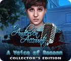 The Andersen Accounts: A Voice of Reason Collector's Edition spēle